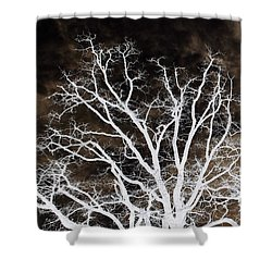 Tree Top Left Diptych Shower Curtain by Ellen O'Reilly