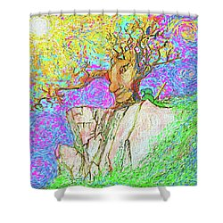 Tree Touches Sky Shower Curtain by Hidden Mountain and Tao Arrow