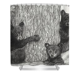 Tree Trio  Shower Curtain