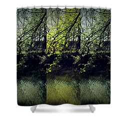 Tree Triptych Shower Curtain