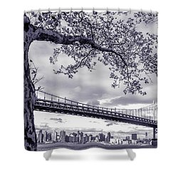 Tree With A Bridge Shower Curtain