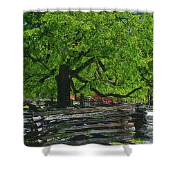 Tree With Colonial Fence Shower Curtain