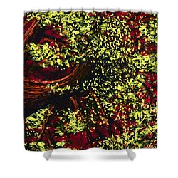 Tree With Red Sky Shower Curtain