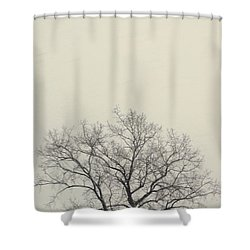 Tree#1 Shower Curtain by Susan Crossman Buscho