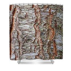 Treeform 1 Shower Curtain