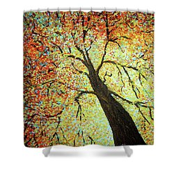 Treehouse Branches Shower Curtain
