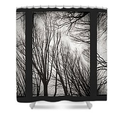 Treeology Shower Curtain by Dorit Fuhg
