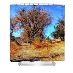 Trees Along Elizabeth Lake Shower Curtain