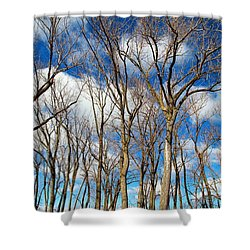 Shower Curtain featuring the photograph Trees And Clouds by Valentino Visentini