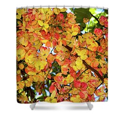 Trees And Flowers In Hawaii Shower Curtain