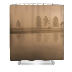 Shower Curtain featuring the photograph Trees And Fog by Gary Lengyel