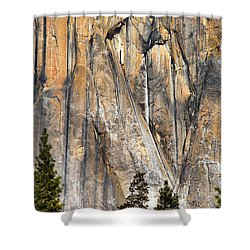 Trees And Granite Shower Curtain