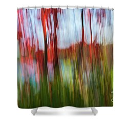 Shower Curtain featuring the photograph Trees And Lake by Elena Elisseeva