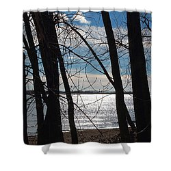 Shower Curtain featuring the photograph Trees And Lake Reflections by Valentino Visentini