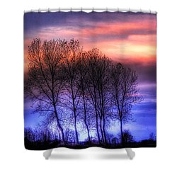 Trees And Twilight Shower Curtain
