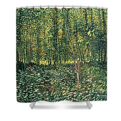 Trees And Undergrowth Shower Curtain by Vincent Van Gogh