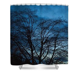 Trees At Dusk Shower Curtain by John Rossman
