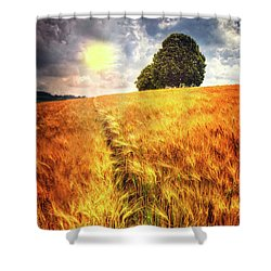 Shower Curtain featuring the photograph Trees At The Top by Debra and Dave Vanderlaan