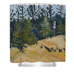 Trees Grow Shower Curtain