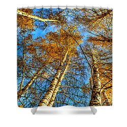 Trees Grow To The Sky Paint Shower Curtain