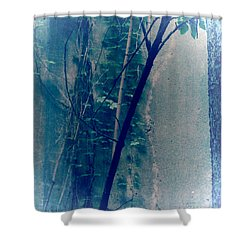 Trees Growing In Silo Abstract- Square 2015 Edition Shower Curtain by Tony Grider