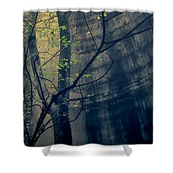 Trees Growing In Silo - Wide Yellow Blue Edition Shower Curtain