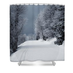 Trees Hills And Snow Shower Curtain by Miguel Winterpacht