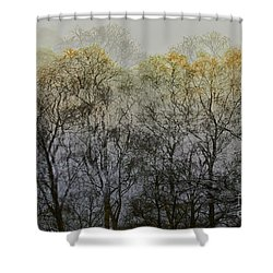 Shower Curtain featuring the photograph Trees Illuminated By Faint Sunshine, Double Exposed Image by Nick Biemans