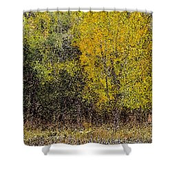 Trees In Fall With Texture Shower Curtain by John Brink