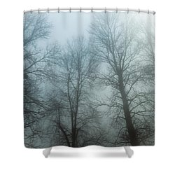 Trees In Mist Shower Curtain by Tetyana Kokhanets