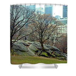 Shower Curtain featuring the photograph Trees In Rock by Sandy Moulder