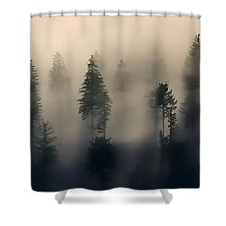 Trees In The Fog Shower Curtain by Jerry Sodorff
