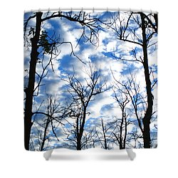 Trees In The Sky Shower Curtain by Shari Jardina