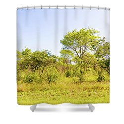 Trees In Zambia Shower Curtain