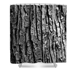 Trees Never Gone Shower Curtain by Dorin Adrian Berbier