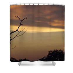 Trees Of The Lake Shower Curtain by Don Koester