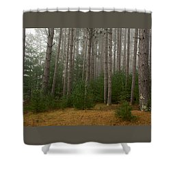 Trees On A Foggy Autumn Day 1 Shower Curtain by Nancy De Flon