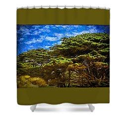 Trees On An Oregon Beach Shower Curtain