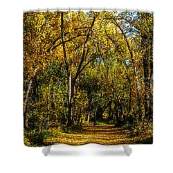 Trees Over A Path Through The Woods In Fall Color Shower Curtain