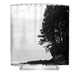 Trees Over The Ocean Shower Curtain