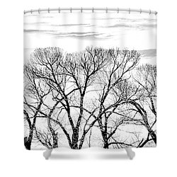 Shower Curtain featuring the photograph Trees Silhouette Black And White by Jennie Marie Schell