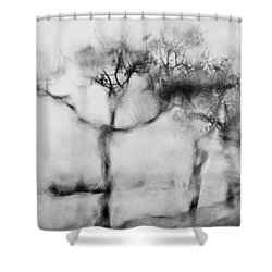 Trees Through The Window Shower Curtain