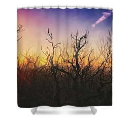 Treetop Silhouette - Sunset At Lapham Peak #1 Shower Curtain by Jennifer Rondinelli Reilly - Fine Art Photography