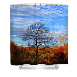 Shower Curtain featuring the photograph Treetops Sunrise by Kathryn Meyer