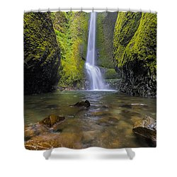 Trek To Lower Oneonta Falls Shower Curtain by David Gn