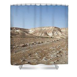 Trekker Alone On The Wild Way Shower Curtain by Yoel Koskas