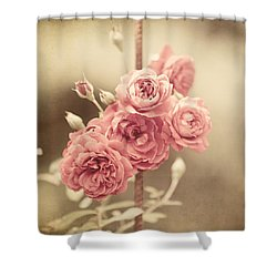 Trellis Roses Shower Curtain by Lisa Russo
