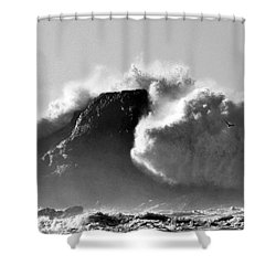 Tremendous Shower Curtain by Sheila Ping