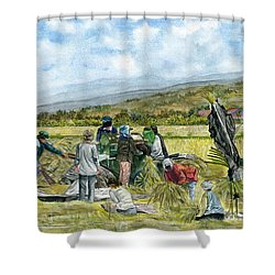 Shower Curtain featuring the painting Treshing Rice by Melly Terpening
