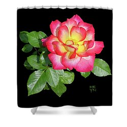 Tri-color Pink Rose2 Cutout Shower Curtain